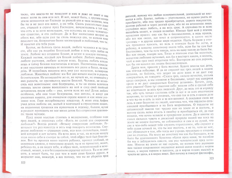 Иллюстрация 1 из 13 для Братья Карамазовы - Федор Достоевский | Лабиринт - книги. Источник: Лабиринт