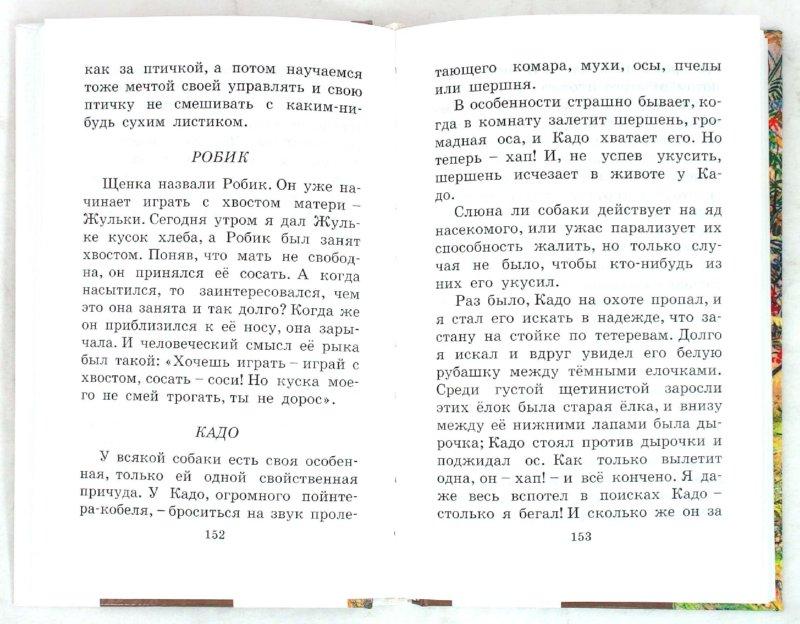 Иллюстрация 1 из 9 для Курымушка - Михаил Пришвин   Лабиринт - книги. Источник: Лабиринт
