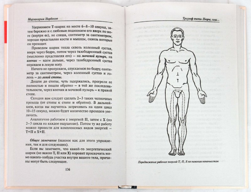 Иллюстрация 1 из 22 для Энергетическая клизма, или Триумф тети Нюры из Простодырово - Мирзакарим Норбеков | Лабиринт - книги. Источник: Лабиринт