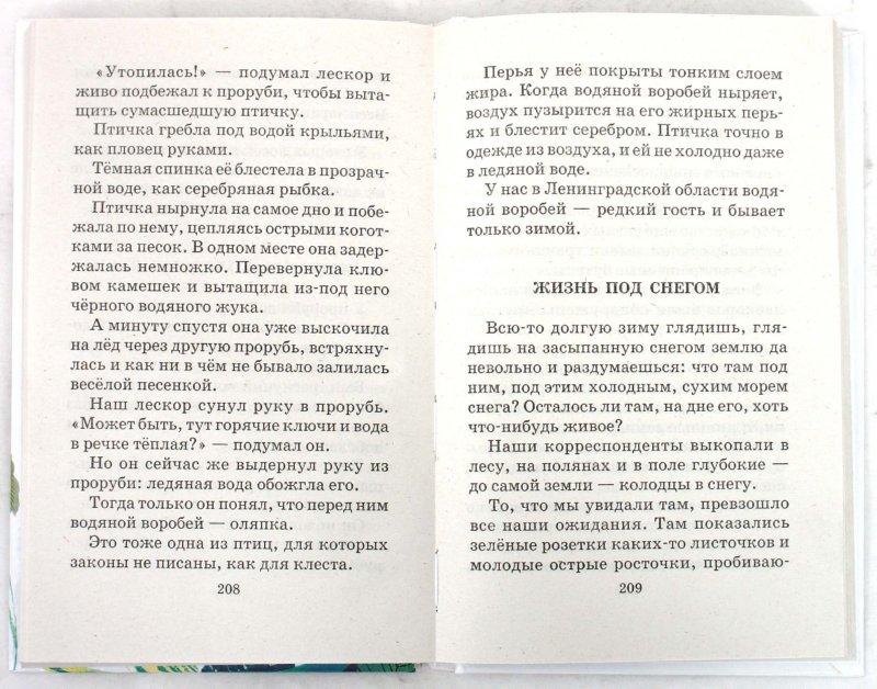 Иллюстрация 1 из 2 для Лесная газета: Рассказы и сказки - Виталий Бианки   Лабиринт - книги. Источник: Лабиринт