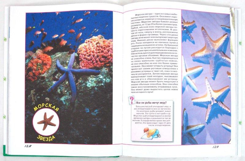 Иллюстрация 1 из 39 для Большая книга о животных для самых маленьких - Галина Шалаева   Лабиринт - книги. Источник: Лабиринт