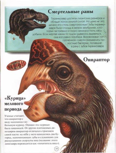 Иллюстрация 1 из 9 для Динозавры - Дэвид Берген | Лабиринт - книги. Источник: Лабиринт