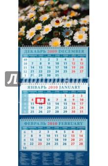 Календарь 2010 Ромашки (14948)