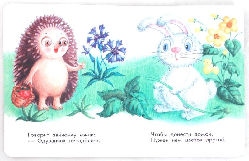 Иллюстрация 1 из 7 для Зайчик - Анна Макулина   Лабиринт - книги. Источник: Лабиринт