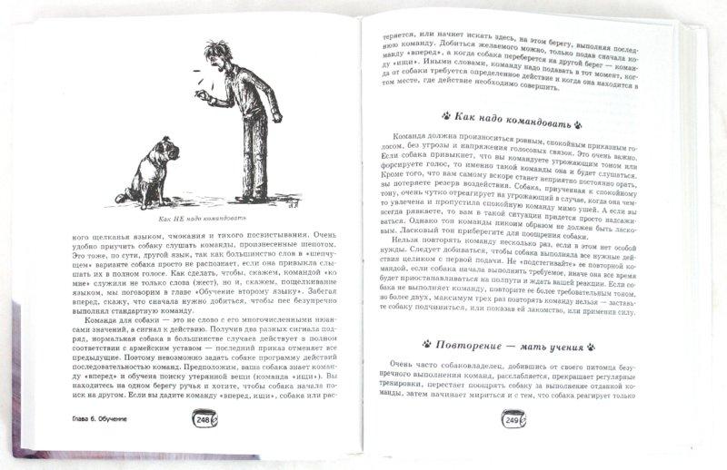Иллюстрация 1 из 8 для Ваша собака. Воспитание и уход - Алексей Целлариус | Лабиринт - книги. Источник: Лабиринт