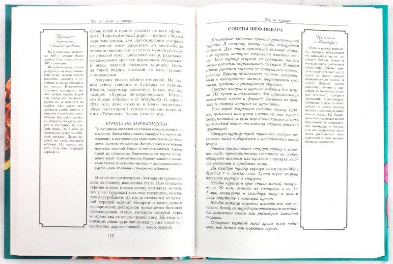 Иллюстрация 1 из 11 для Все из мяса и птицы на плите и на мангале - Лазерсон, Синельников | Лабиринт - книги. Источник: Лабиринт