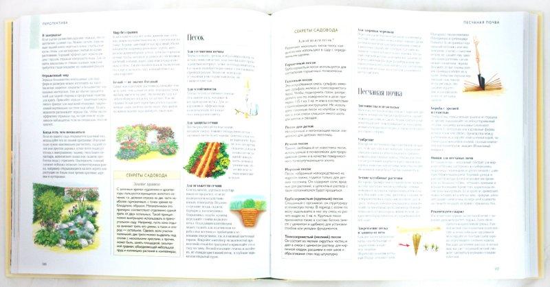 Иллюстрация 1 из 25 для 1000 советов и идей для вашего сада | Лабиринт - книги. Источник: Лабиринт