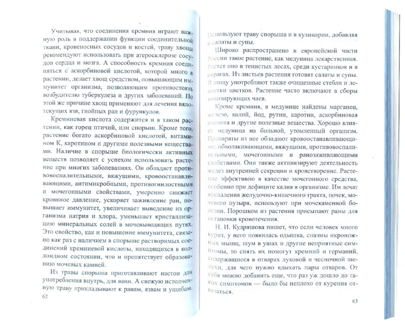 Иллюстрация 1 из 5 для Кремний. Мифы и реальность - Иван Неумывакин | Лабиринт - книги. Источник: Лабиринт