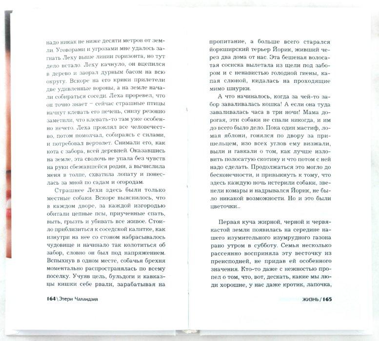Иллюстрация 1 из 7 для Каблуки в кармане - Этери Чаландзия | Лабиринт - книги. Источник: Лабиринт