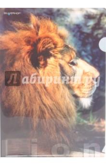 """Папка-уголок (плотная) """"Lion"""" (211010-13)"""