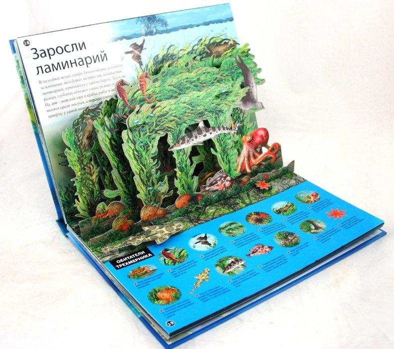 Иллюстрация 1 из 15 для Океаны - Джен Грин | Лабиринт - книги. Источник: Лабиринт
