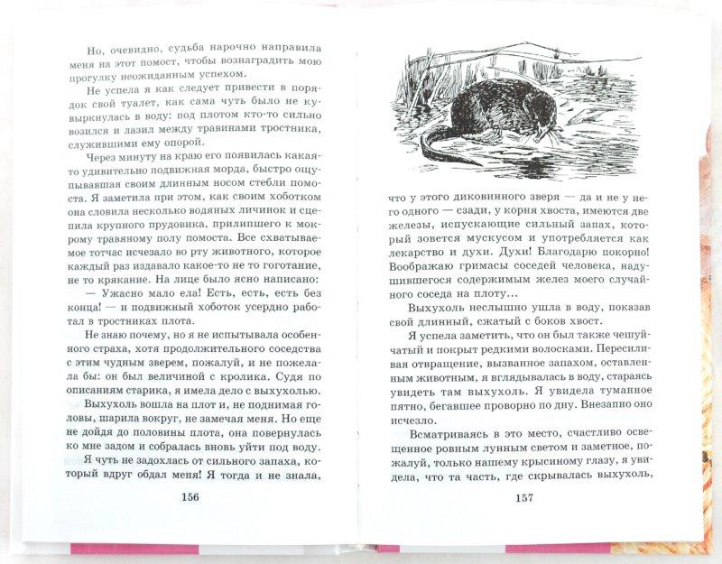 Иллюстрация 1 из 9 для Хруп. Воспоминания крысы-натуралиста - Александр Ященко | Лабиринт - книги. Источник: Лабиринт