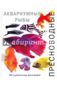 Пресноводные аквариумные рыбыАквариум. Террариум<br>В этой потрясающей книге представлено 800 удивительных фотографий, отражающих своеобразие более чем 150 популярных пресноводных аквариумных рыбок. <br>Фотограф Роджерс Джофф показал нам свой взгляд на живой подводный мир - яркие снимки аквариумных рыб, которые являются звездами в собственном пленительном и полном жизни мире. Целью автора текстов к фотографиям в этой книге было, скорее, передать индивидуальные особенности рыб, нежели ознакомить читателя с деталями их анатомии или подробностями содержания в аквариуме. Фотоальбом позволяет взглянуть более близко на самых разнообразных рыб, на которых многие из нас смотрят лишь мельком, поймать саму сущность их жизни. <br>Благодаря уникальным и оригинальным фотографиям эта книга будет интересна и привлекательна не только для специалистов и владельцев аквариумов, но и для всех любителей аквариумных рыб и живой природы.<br>