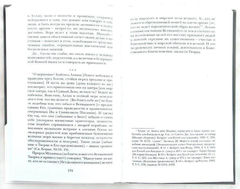 Иллюстрация 1 из 9 для Мир души - Шамиль Аляутдинов | Лабиринт - книги. Источник: Лабиринт