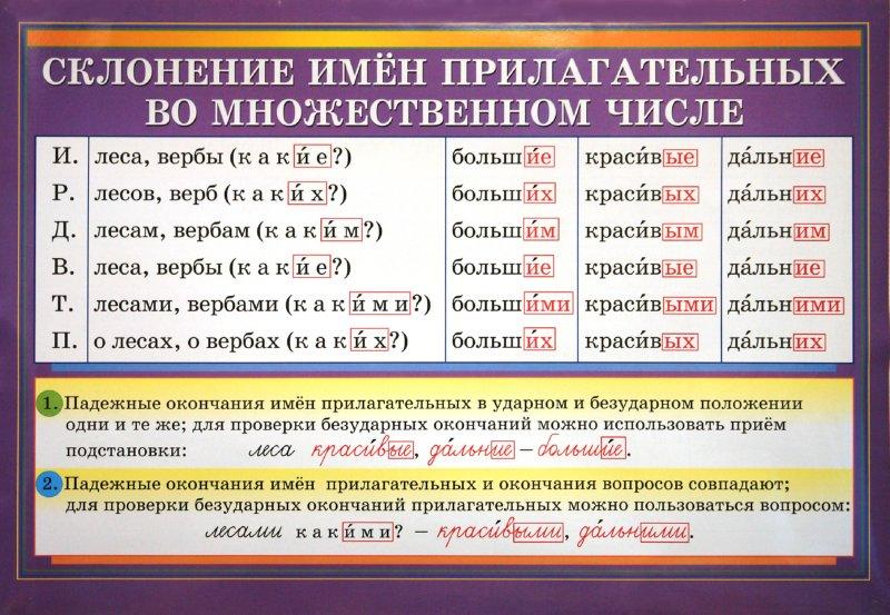 """Иллюстрация 2 к книге  """"Русский язык.  1-4 классы.  Части речи.  Обобщение.  Склонение имен прилагательных во множеств..."""