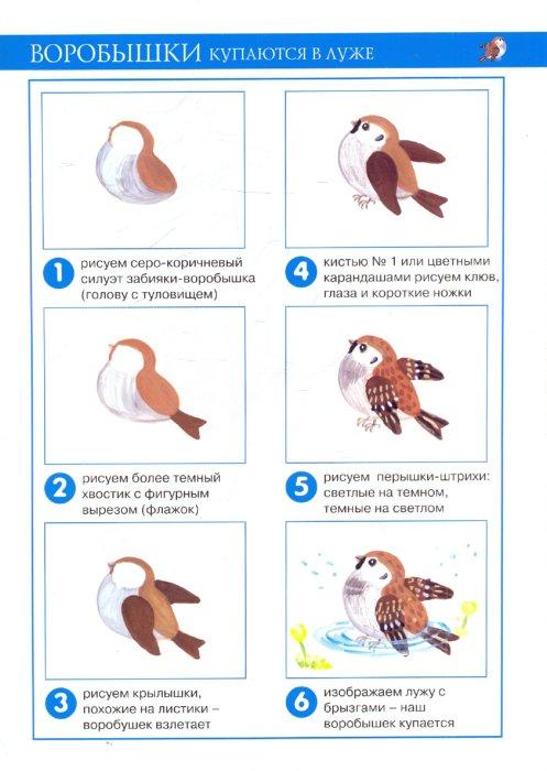 Иллюстрация 1 из 16 для Наши птицы (рисование красками). 4-7 лет. Методические рекомендации - Ирина Лыкова | Лабиринт - книги. Источник: Лабиринт