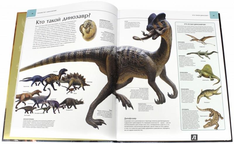 Иллюстрация 1 из 89 для Динозавры. Иллюстрированный атлас   Лабиринт - книги. Источник: Лабиринт