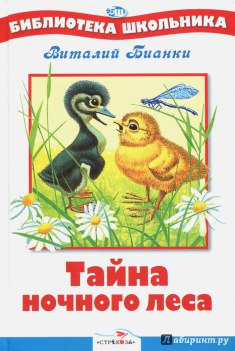 Иллюстрация 1 из 6 для Тайна ночного леса - Виталий Бианки | Лабиринт - книги. Источник: Лабиринт