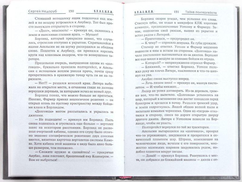 Иллюстрация 1 из 16 для Тайна полтергейста - Сергей Недоруб | Лабиринт - книги. Источник: Лабиринт