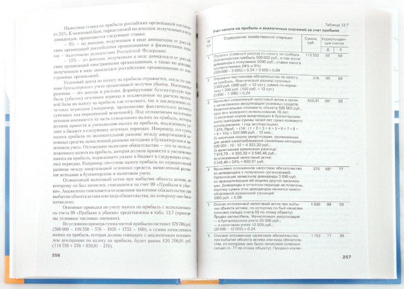 Иллюстрация 1 из 16 для Бухгалтерский учет и аудит - Елена Галкина | Лабиринт - книги. Источник: Лабиринт