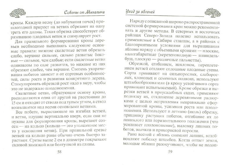 Иллюстрация 1 из 13 для Все о яблоне и яблоках - Николай Звонарев | Лабиринт - книги. Источник: Лабиринт