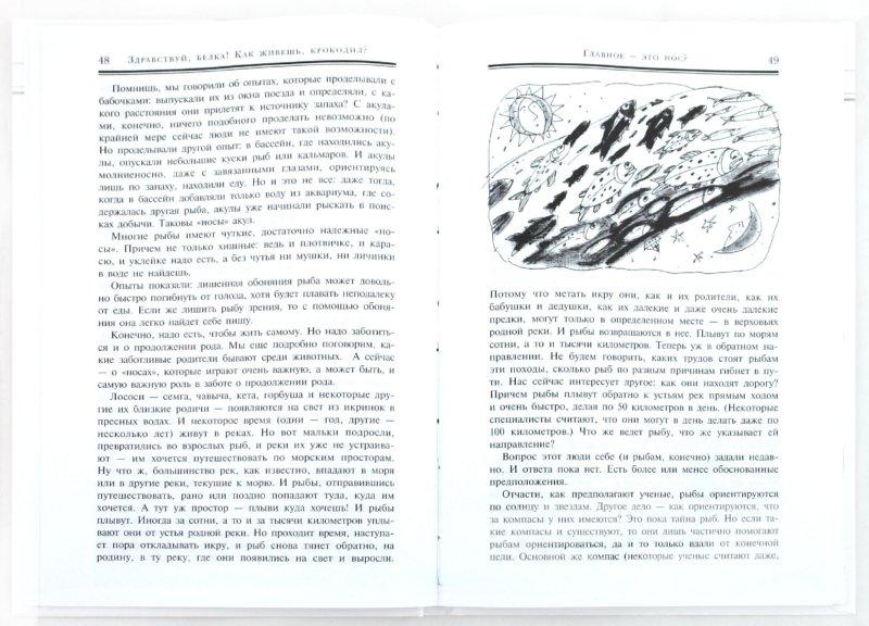 Иллюстрация 1 из 29 для Здравствуй, белка! Как живешь,  крокодил? - Юрий Дмитриев   Лабиринт - книги. Источник: Лабиринт