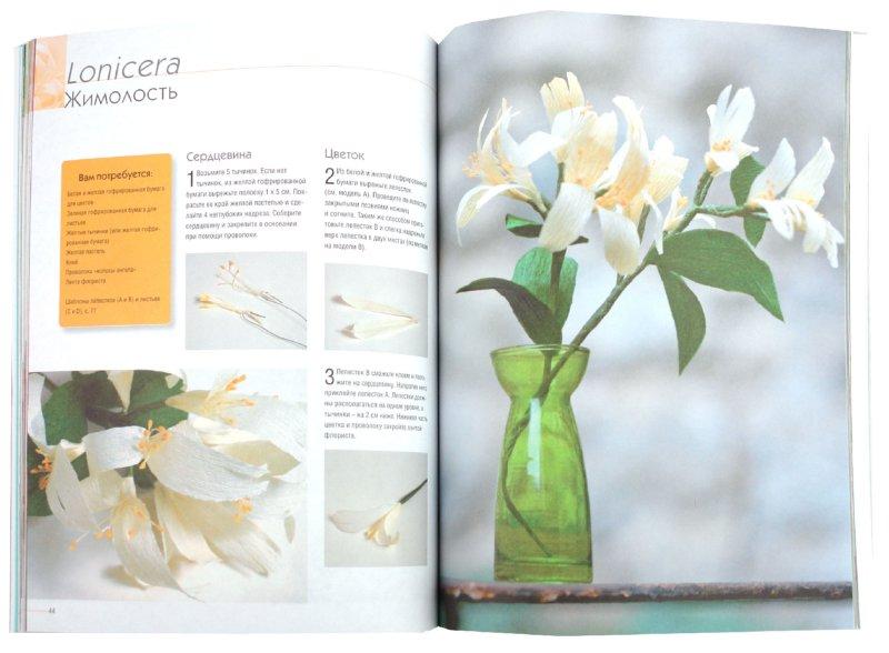 Иллюстрация 1 из 3 для Цветы из бумаги. 20 оригинальных моделей из жатой бумаги - Мари Шевалье | Лабиринт - книги. Источник: Лабиринт