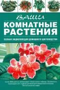 Галина Попова: Ваши комнатные растения