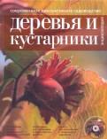 Современное декоративное садоводство. Деревья и кустарники (+CD)