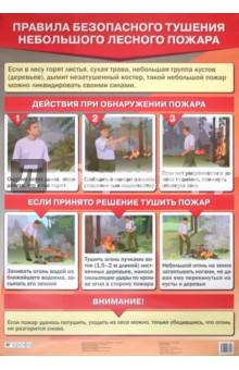 Латчук В. Н., Миронов С. К., Миронов В. К. Правила безопасного тушения небольшого лесного пожара