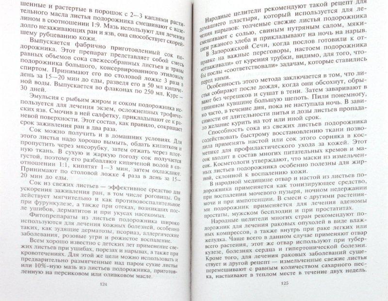 Иллюстрация 1 из 12 для Уникальные лечебные свойства сорняков - Корсун, Викторов | Лабиринт - книги. Источник: Лабиринт