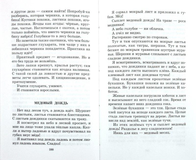 Иллюстрация 1 из 43 для Лесные тайнички - Николай Сладков | Лабиринт - книги. Источник: Лабиринт