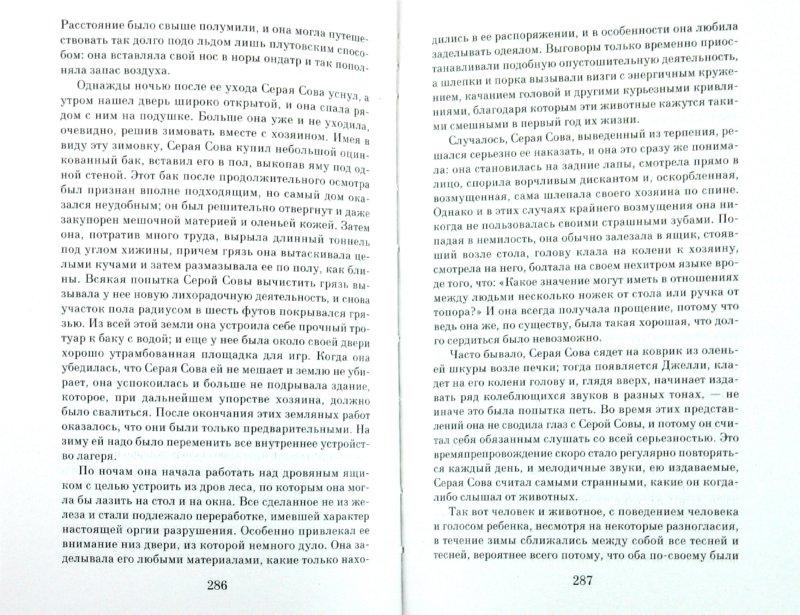 Иллюстрация 1 из 3 для Лесная капель - Михаил Пришвин | Лабиринт - книги. Источник: Лабиринт