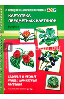 И лесные ягоды комнатные растения