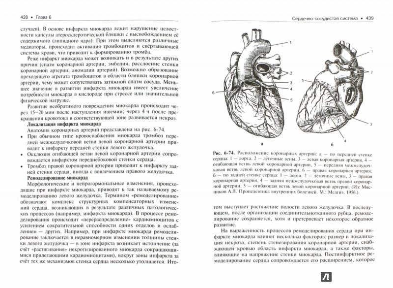Учебник Внутренние Болезни Мухин