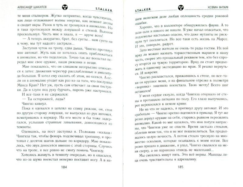Книга хозяин янтаря александр шакилов