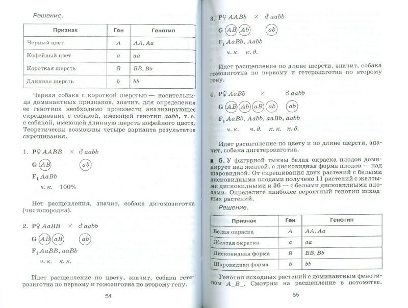 Решение задач по генетике с использованием законов Г. Менделя.