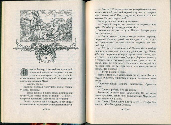 Иллюстрация 1 из 24 для Саламандастрон - Брайан Джейкс   Лабиринт - книги. Источник: Лабиринт