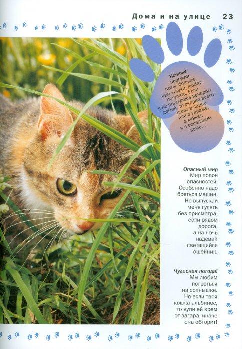 Иллюстрация 1 из 26 для Кошка - Мэтью Рейнер | Лабиринт - книги. Источник: Лабиринт