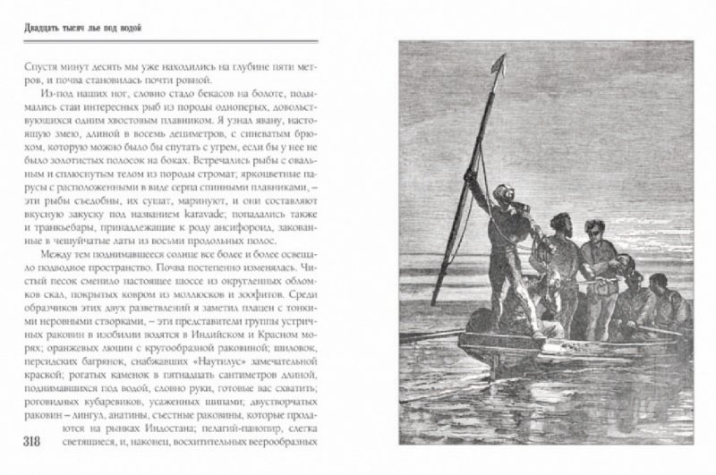 Иллюстрация 1 из 41 для Двадцать тысяч лье под водой: путешествие вокруг света на подводной лодке - Жюль Верн | Лабиринт - книги. Источник: Лабиринт