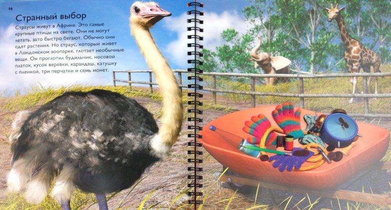 Иллюстрация 1 из 31 для Птицы - Роберт Коуп   Лабиринт - книги. Источник: Лабиринт