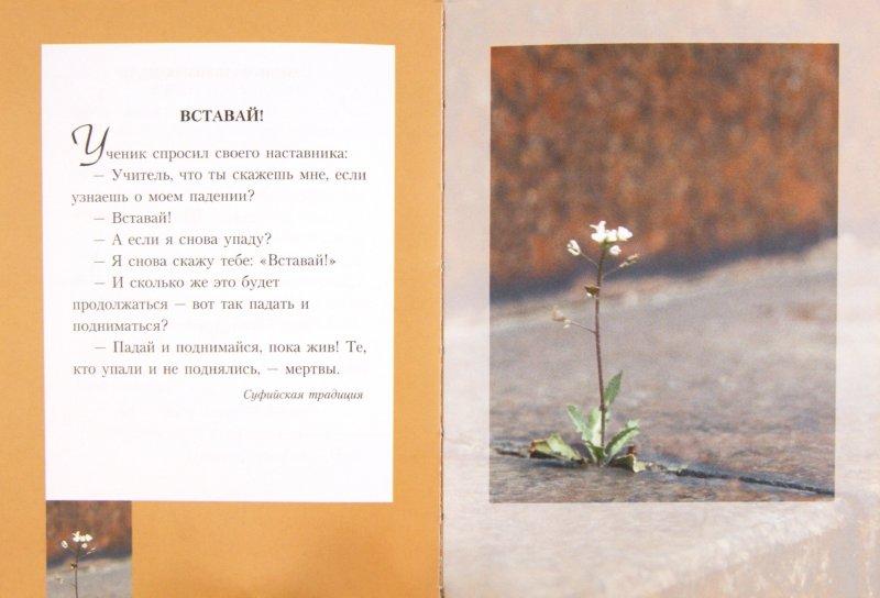 Иллюстрация 1 из 14 для Притчи о главном: Сборник | Лабиринт - книги. Источник: Лабиринт