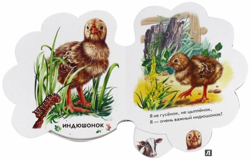 Иллюстрация 1 из 10 для В деревне - Ирина Солнышко | Лабиринт - книги. Источник: Лабиринт