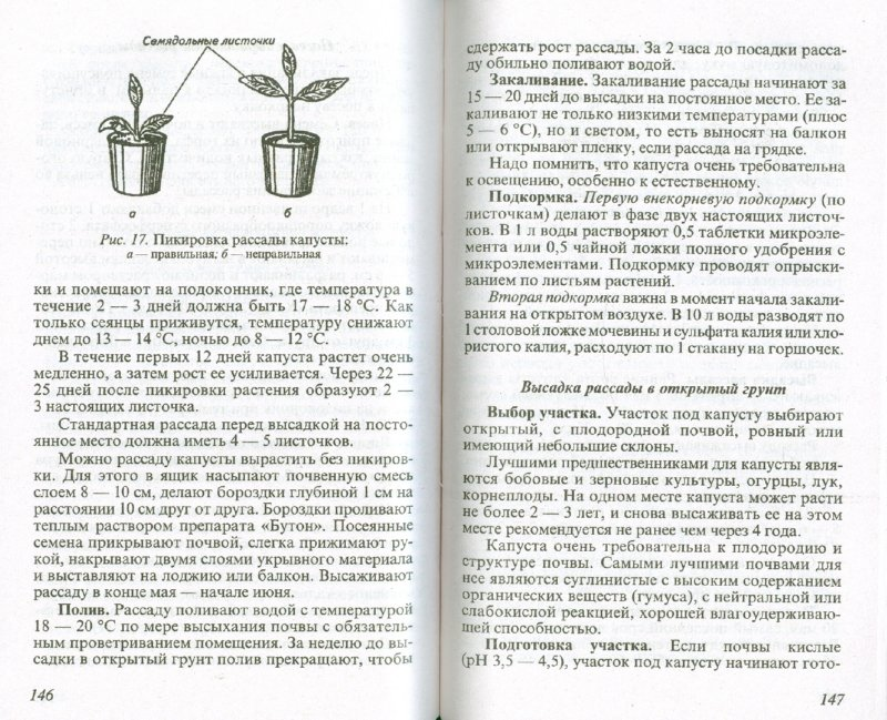 Иллюстрация 1 из 16 для Советы огородникам - Ганичкина, Ганичкин | Лабиринт - книги. Источник: Лабиринт
