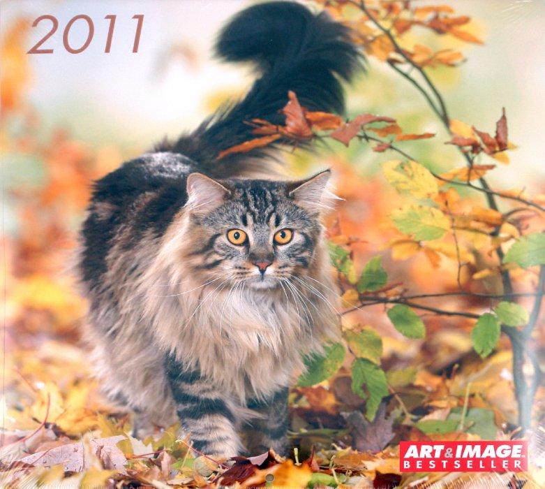 """Иллюстрация 1 из 2 для Календарь 2011 """"Кошки"""" (4431-1)   Лабиринт - сувениры. Источник: Лабиринт"""
