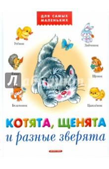 Котята, щенята и разные зверята