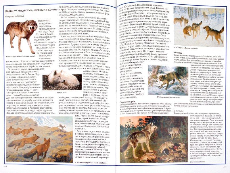 Иллюстрация 1 из 26 для Загадки животного мира - Калашников, Лаврова | Лабиринт - книги. Источник: Лабиринт