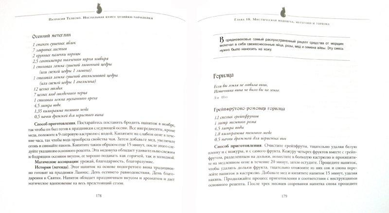 Иллюстрация 1 из 9 для Настольная книга хозяйки-чародейки. Рецепты напитков - Патриция Телеско | Лабиринт - книги. Источник: Лабиринт