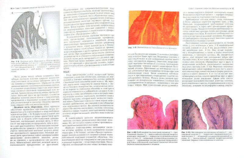 Иллюстрация 1 из 21 для Терапевтическая стоматология. Заболевания слизистой оболочки рта. В 3-х частях. Часть 3. Учебник - Барер, Волков, Гемонов | Лабиринт - книги. Источник: Лабиринт