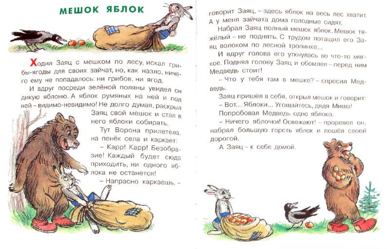 Иллюстрация 1 из 13 для Под грибом - Владимир Сутеев | Лабиринт - книги. Источник: Лабиринт